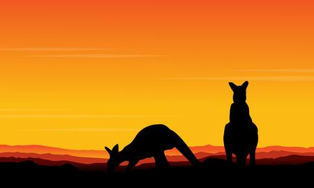 Vector art kangaroo beauty scenery