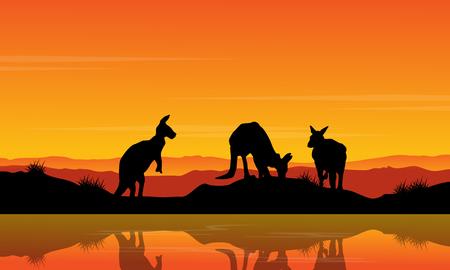 Landscape kangaroo on the river silhouette Illustration