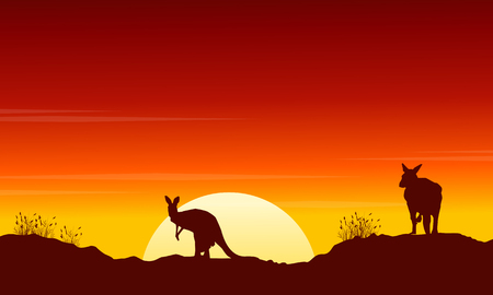 Collection kangaroo at sunset silhouette scenery vector art