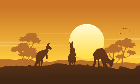 Silhouette kangaroo landscape beauty collection vector art
