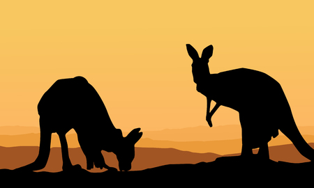 Two kangaroo scenery silhouette collection Illustration
