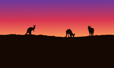joey: Silhouette landscape kangaroo with beauty sky