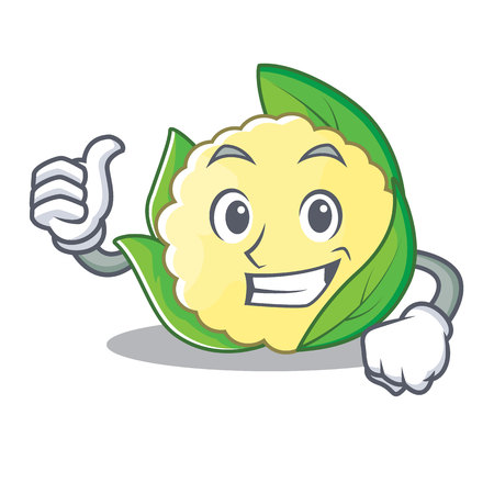 Thumbs up cauliflower character cartoon style vector illustration.