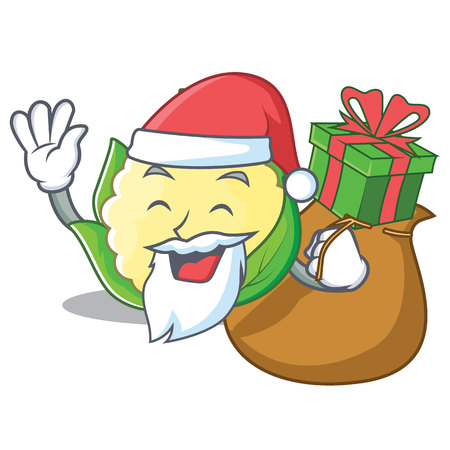 Santa with gift cauliflower character cartoon style vector illustration