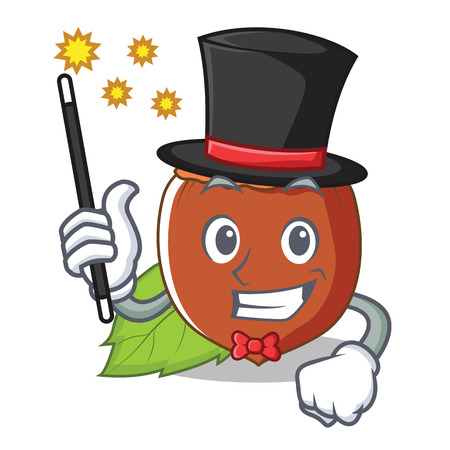 Magician hazelnut mascot cartoon style Illustration