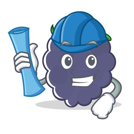 Architect blackberry character cartoon style Illustration