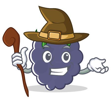 Witch blackberry mascot cartoon style
