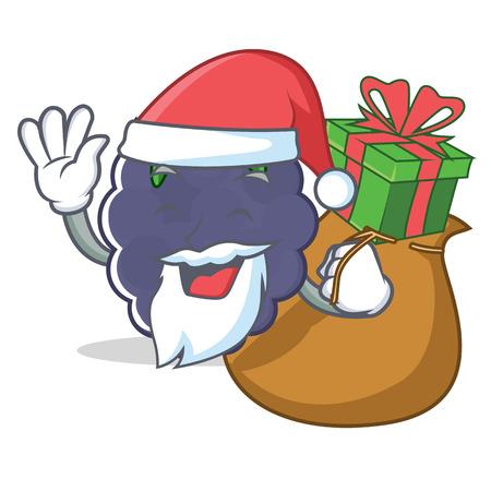 Santa with gift blackberry mascot cartoon style vector illustration
