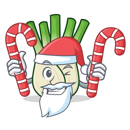 Santa with candy fennel mascot cartoon style vector illustration