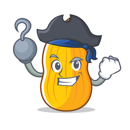 Pirate Squash character cartoon