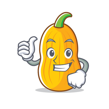 Thumbs up butternut squash character Illustration
