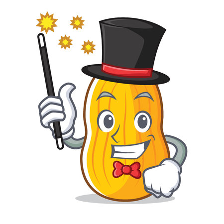 Magician butternut squash mascot cartoon illustration. Illustration