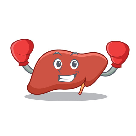 Boxing liver character cartoon style Vector illustration. Illustration