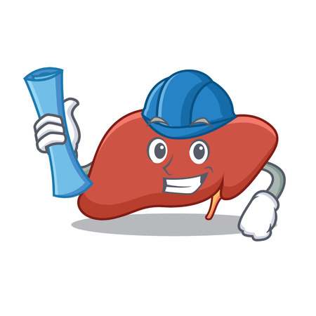 Architect liver character cartoon style Vector illustration.