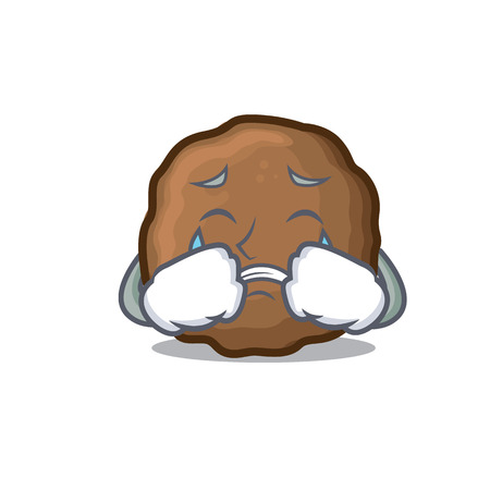 Crying meatball mascot cartoon style Illustration