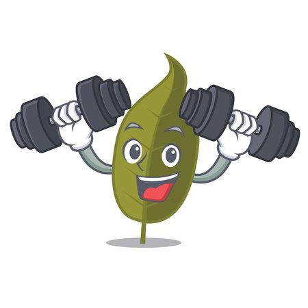 Fitness bay leaf character cartoon illustration. Illustration