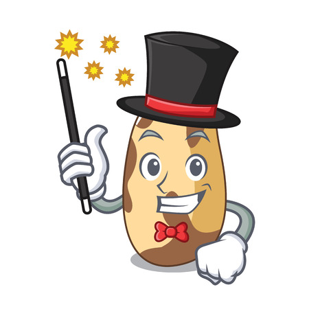 Magician brazil nut mascot cartoon