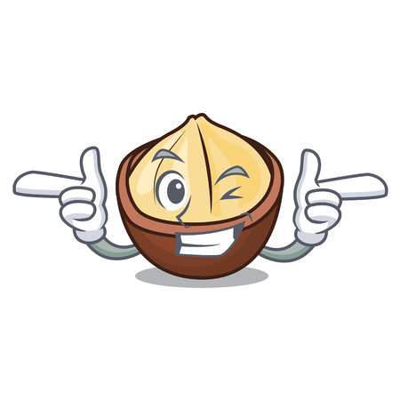 Wink macadamia character cartoon style