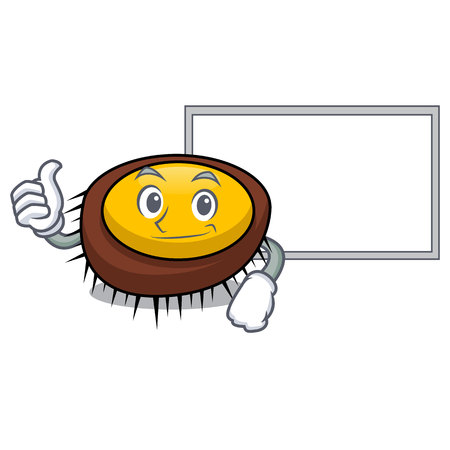 Thumbs up with board sea urchin character cartoon vector illustration