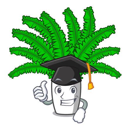 Graduation beautiful cartoon ferns in green foliage vector ilustration