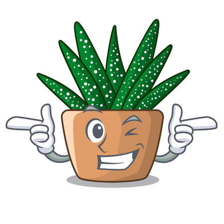 Wink character small zebra cactus plant on pot vector illustration 向量圖像