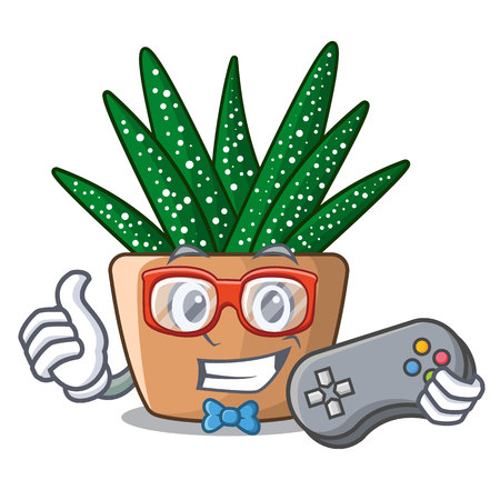 Gamer cartoon zebra cactus blooming in garden vector illustration