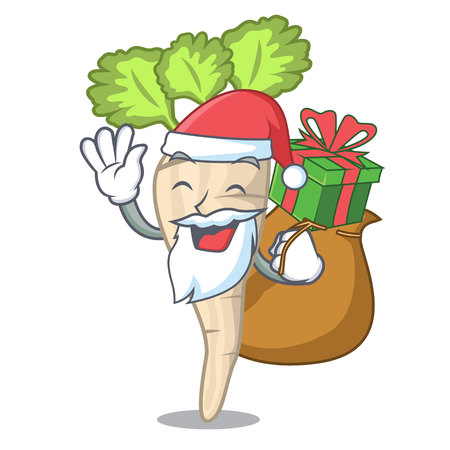Santa with gift fresh organic parsnip vegetable cartoon style vector illustration