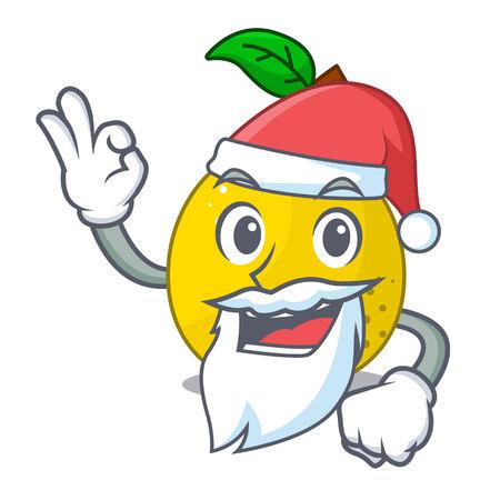 Santa sweet quince isolated on mascot cartoon vector illustration