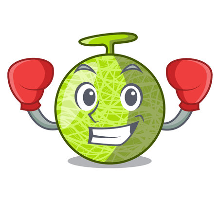 Boxing fresh melon isolated on character cartoon vector illustration Çizim