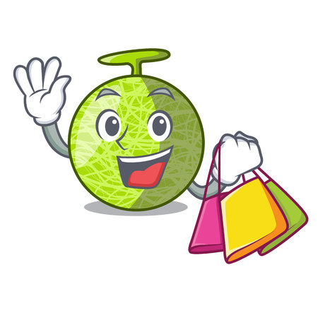 Shopping fresh organic melon in the cartoon vector illustration