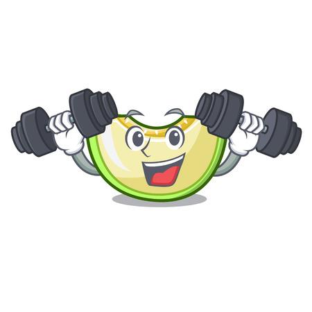 Fitness slice of melon isolated on cartoon vector illustration Vettoriali