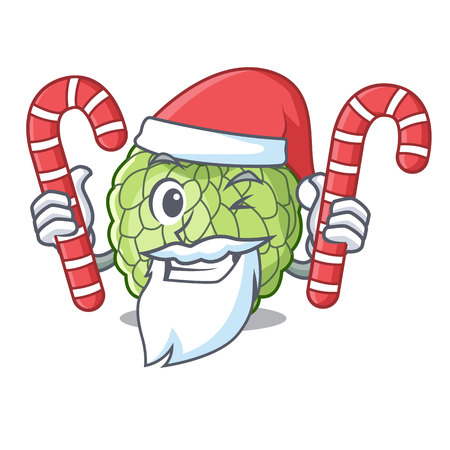 Santa with candy ripe sugar apple fruit on mascot vector illustration