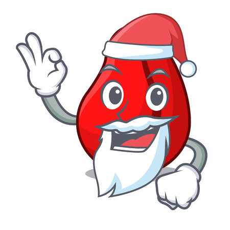 Santa mascot cola nuts for cook ingredient vector illustration