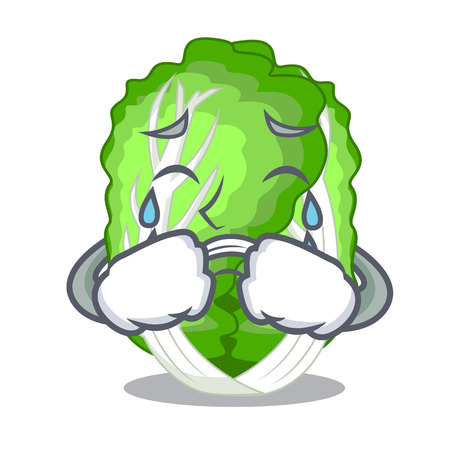 Crying cartoon fresh chinese cabbage vegetable in kitchen vector illustration