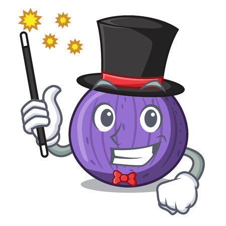 Magician tasty fig fruit isolated on mascot vector illustration