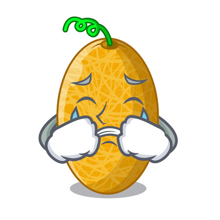 Crying sweet honeydew melon on bowl cartoon vector illustration