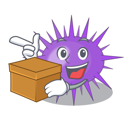 With box Sea urchin commonly called in cartoon vector illustration