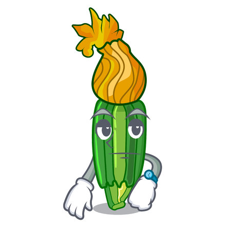 Waiting flower zuchini pumpkins decorated on cartoon vector illustration