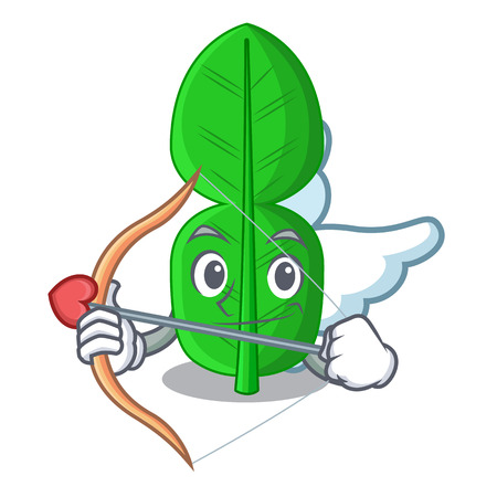 Cupid bergamot lime leaf isolated on mascot vector illustration