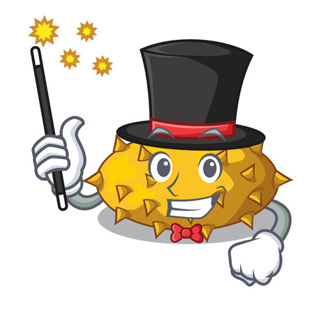 Magician Kiwano fruit isolated on a character vector illustration