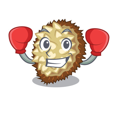Boxing marang fruit isolated on a cartoon vector illustration