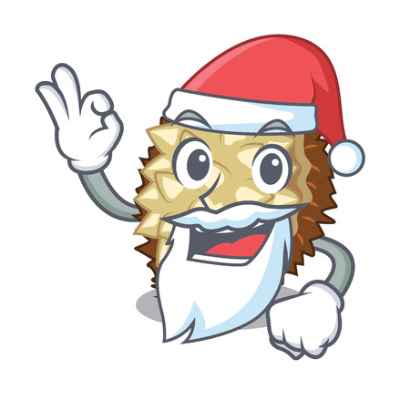 Santa fruit marang is located in mascot vector illustration  イラスト・ベクター素材
