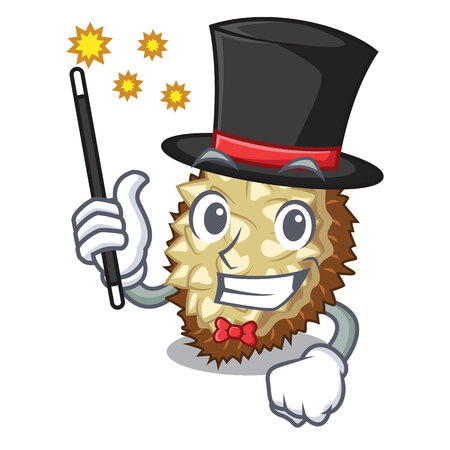 Magician fruit marang is located in mascot vector illustration  イラスト・ベクター素材