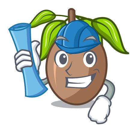 Architect sapodilla fruit isolated on the mascot
