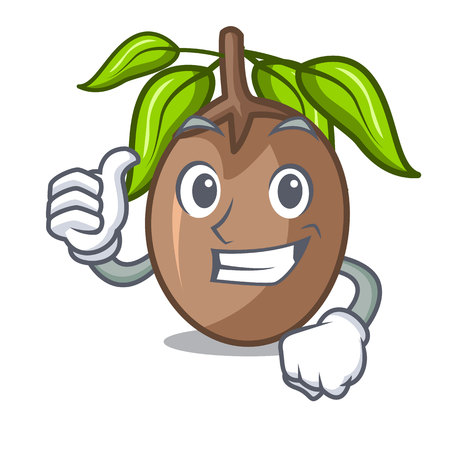 Thumbs up sapodilla fruit isolated on the mascot