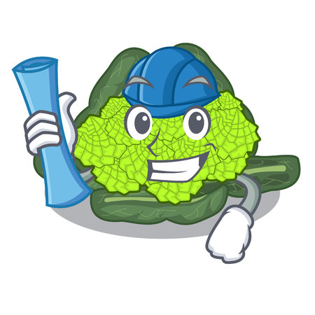 Architect detail texture of roman cauliflower character vector illustration Ilustração