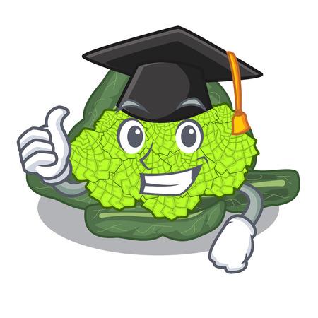 Graduation detail texture of roman cauliflower character vector illustration
