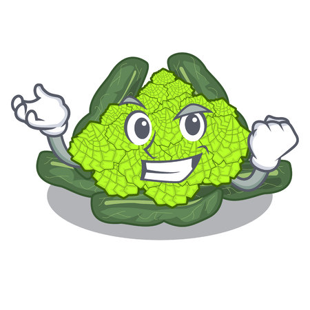 Successful detail texture of roman cauliflower character vector illustration Ilustração