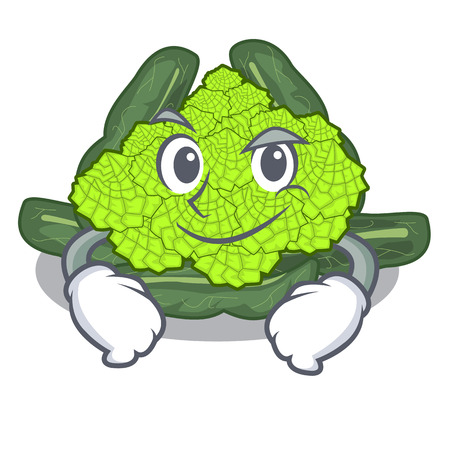Smirking detail texture of roman cauliflower character vector illustration