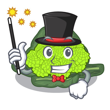 Magician roman cauliflower isolated on the mascot vector illustration